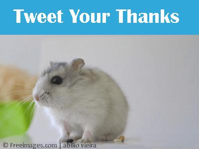 tweet-you-thanks-thumnail