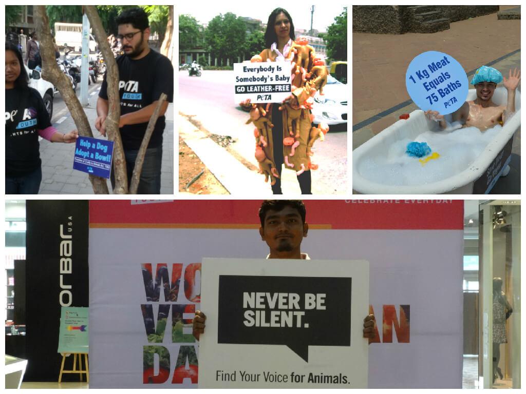 activist-network-collage