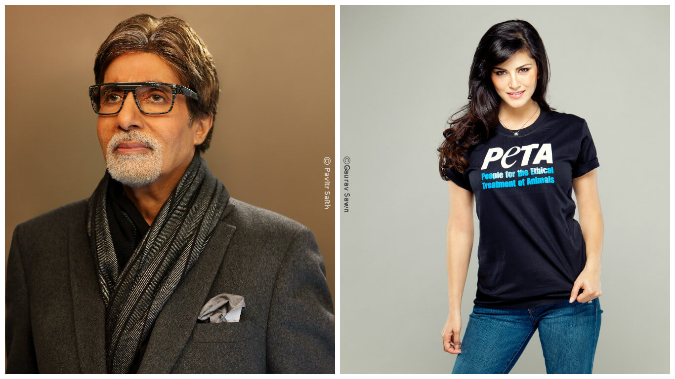 sunny-and-amitabh-collage