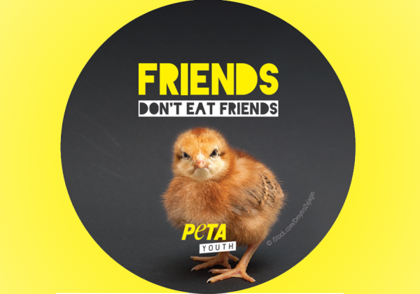 Take Part in PETA India's Friendship Day Mission!