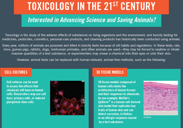 Chemical Toxicity Fact Sheet