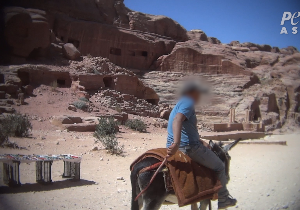 Animals Beaten and Whipped in 'Lost City' of Petra