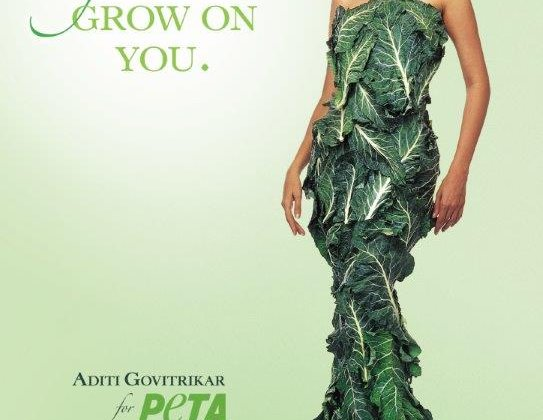 Supermodel Aditi Govitrikar Says, 'Let Vegetarianism Grow on You'