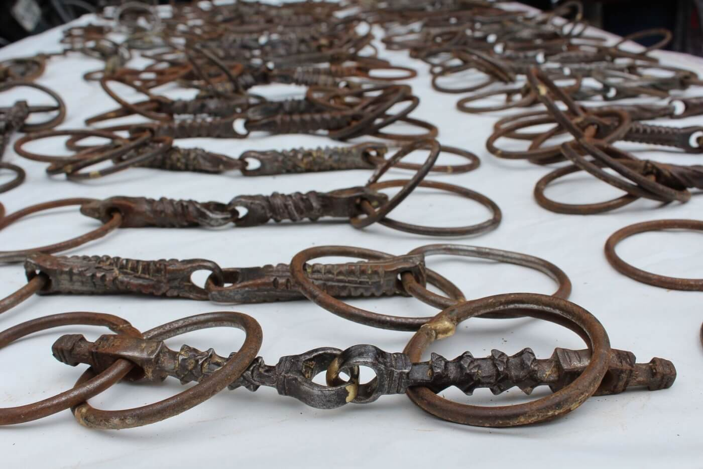 Delhi Police and PETA India Display Over 50 Seized Spiked Bits Used