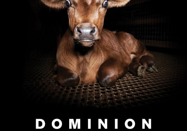 Screening of Groundbreaking Animal Rights Film 'Dominion' Is Coming to Your City