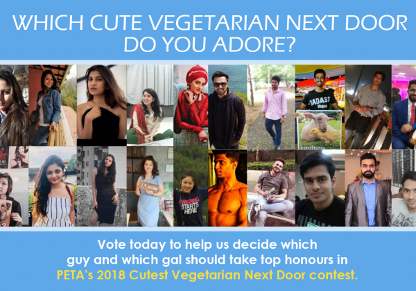 Who Is the Cutest Vegetarian Next Door? Help Us Decide