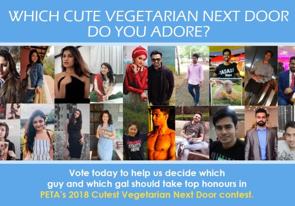 Who Is the Cutest Vegetarian Next Door? Help Us Decide