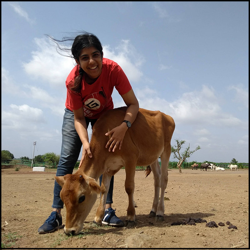 Neha Photo with Baby Calf for Women's Day