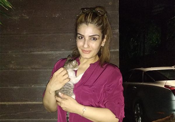 PETA India: India's Animal Rights Organisation   PETA India