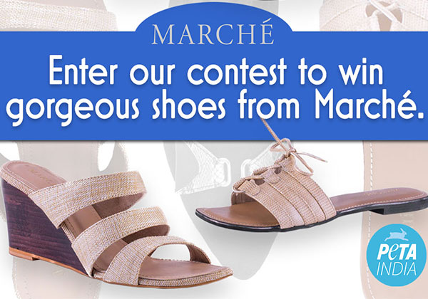 CONTEST IS CLOSED: Meet Your 'Solemate': These Marché Vegan Shoes Could Be Yours
