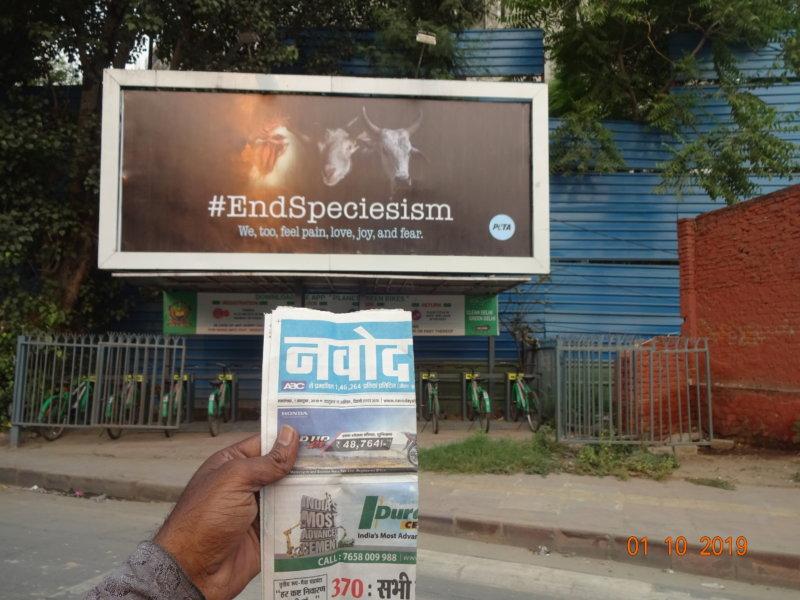 End Speciesism Billboard