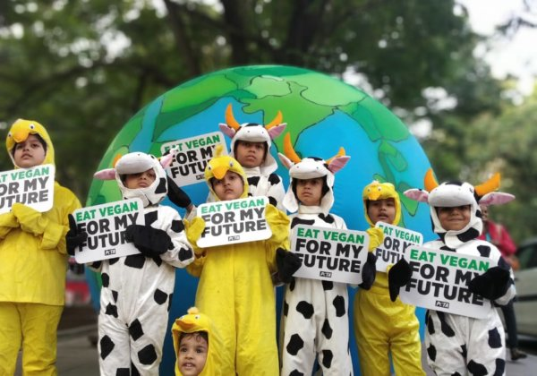 Children's Day Appeal: 'Chicks' and 'Calves' Make Vegan Plea in the Face of Climate Crisis