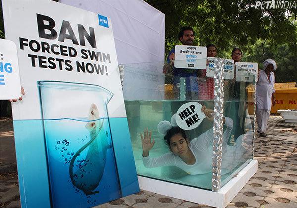 PETA India's Year of Dramatic Demonstrations