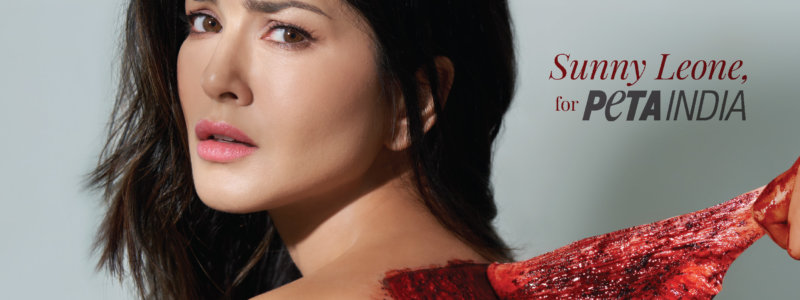 Sunny Leone Is 'Skinned' in New PETA India Ad Launched During Lakmé Fashion Week