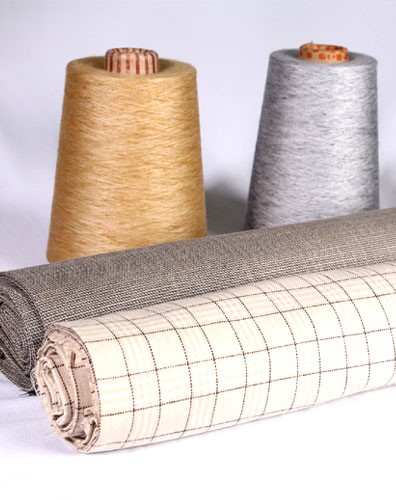 Birla Century Textiles Photo For the Blog
