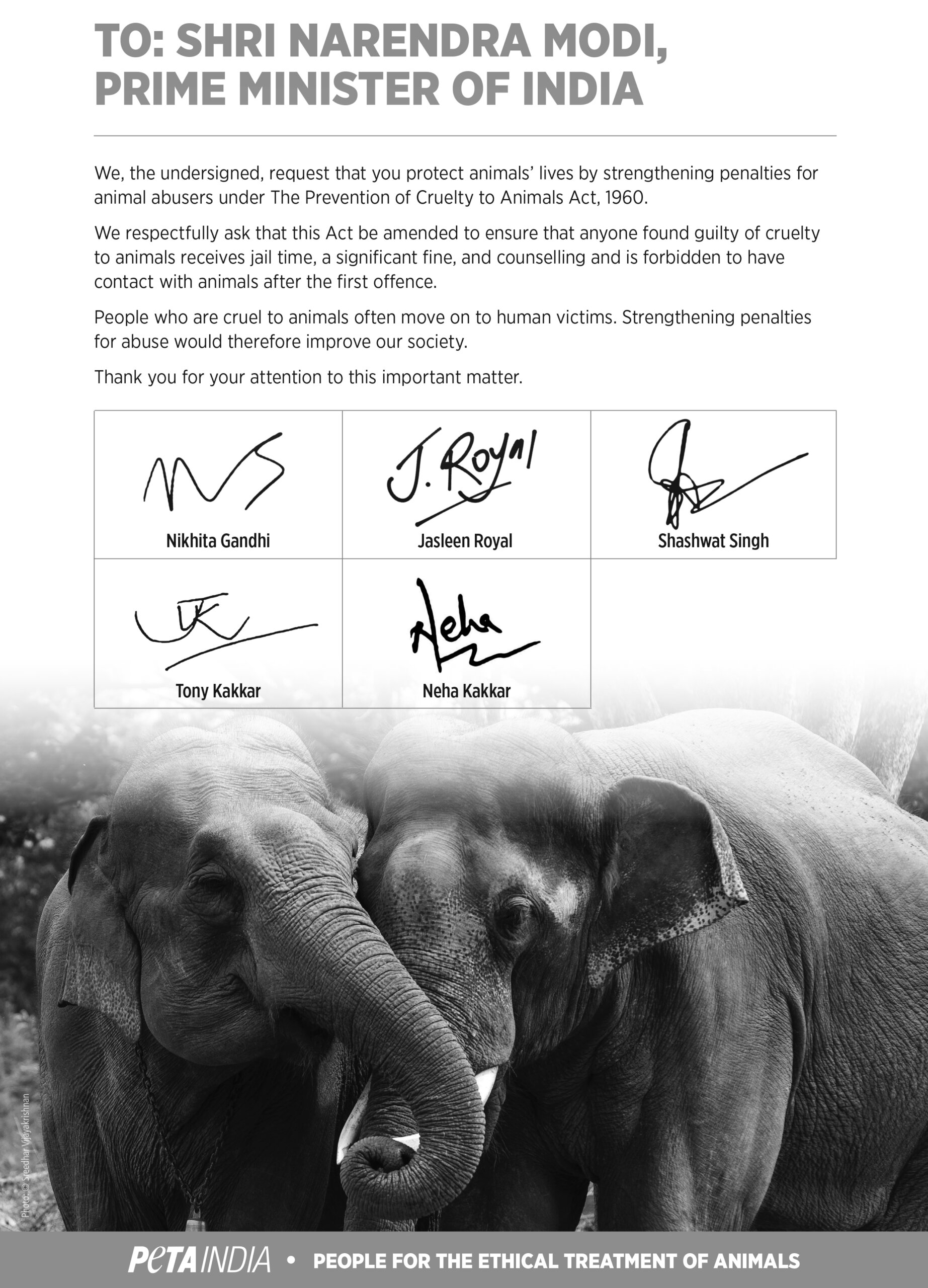 Musicians Stronger Animal Welfare Laws Petition_PETAIndia300