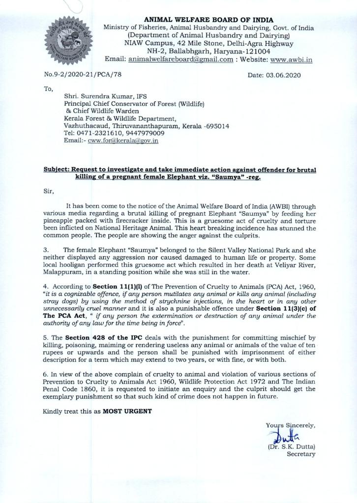 AWBI letter about pregnant elephant in Kerala