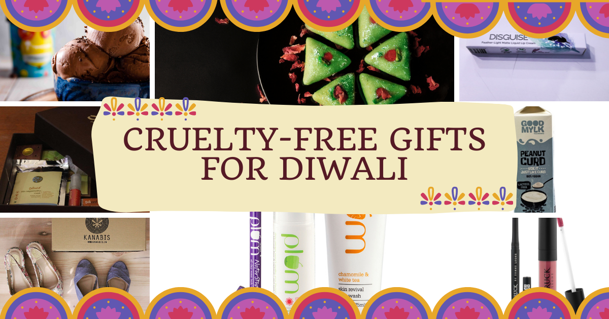 Cruelty-Free Gifts for diwali - 1200 by 630