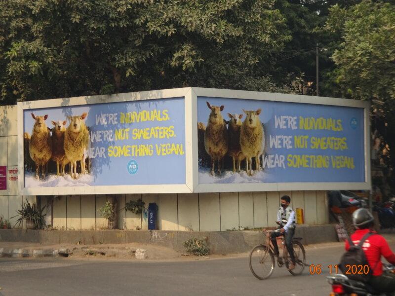 Delhi wool billboard