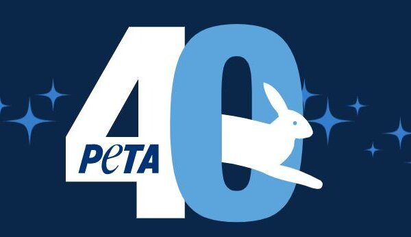 You Won't Believe Who's Coming to PETA US' 40th Anniversary Gala
