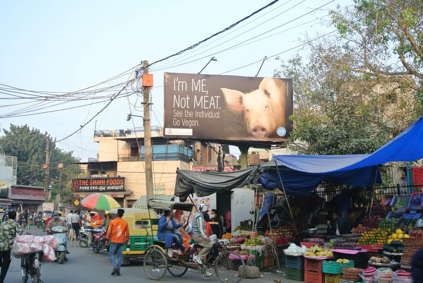 Shahdara market pig i'm me not meat