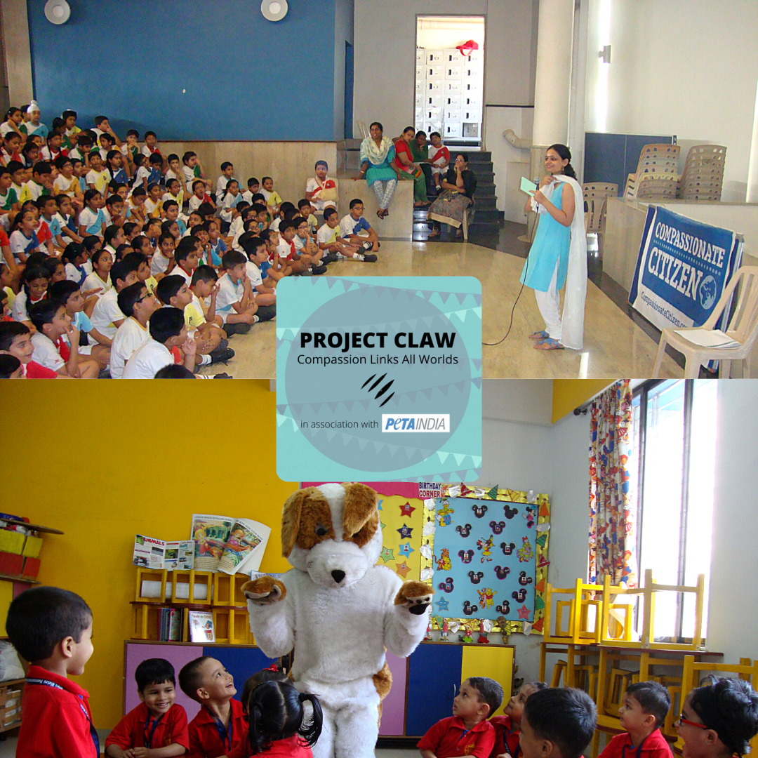 Project CLAW compassionate citizen collaboration