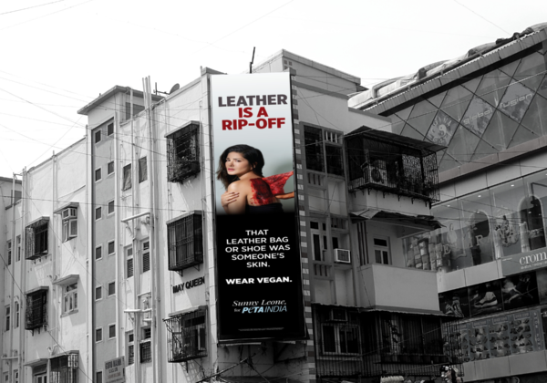 The Best PETA India Billboard Campaigns of 2020