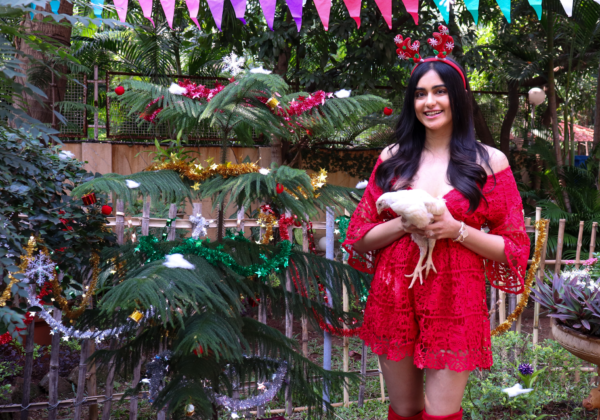 Actor Adah Sharma Hosted PETA India's Christmas Lunch for Rescued Chickens