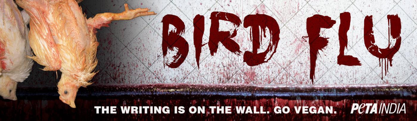 bird flu go vegan billboard