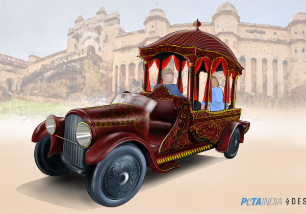 PETA India, Desmania Design Propose Electric Royal Chariot to Replace Elephants at Amer Fort