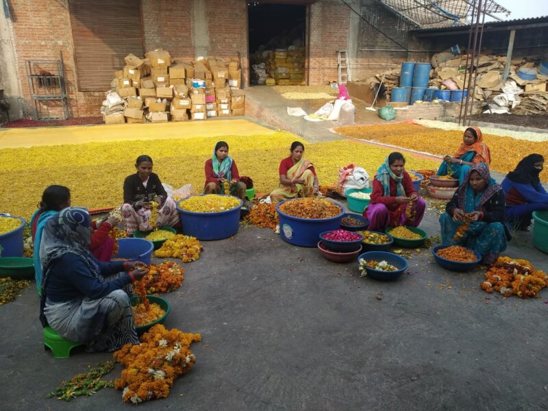 Fleather - Kanpur flower cyclers (1)