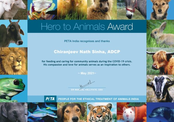 Lucknow Additional Deputy Commissioner of Police Nabs PETA India Award for Helping Animals