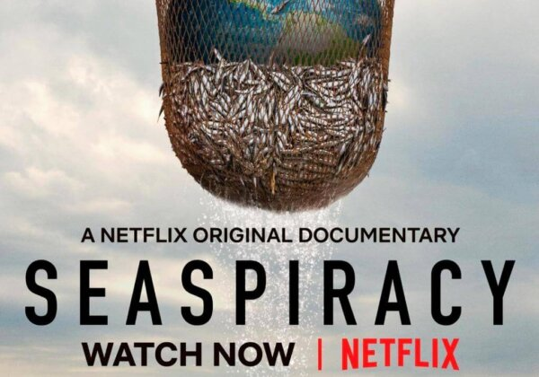 6 Lessons We Can Learn From the Netflix Documentary 'Seaspiracy'