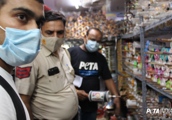 Delhi Police Seize Banned Manja Ahead of Independence Day, Following PETA India Complaint