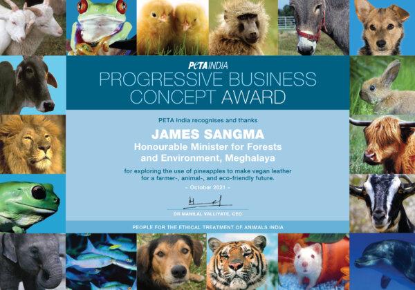 Meghalaya Environment Minister Wins PETA India Award for Pineapple-Leather Plan